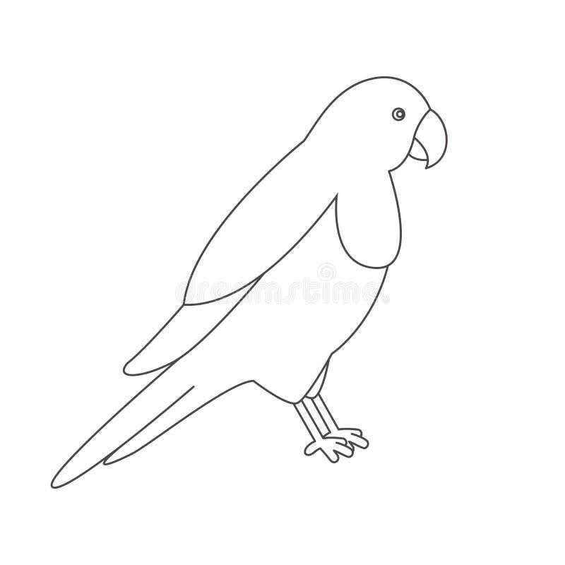 Papuga dla kolorystyki książki ilustracja wektor