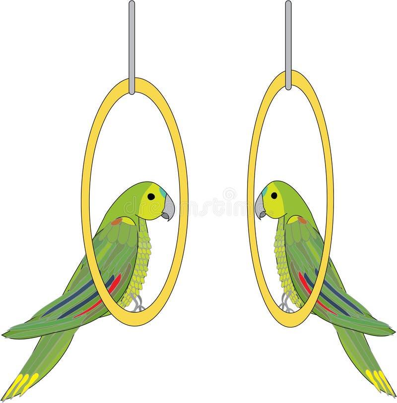 papuga wektor zdjęcia stock