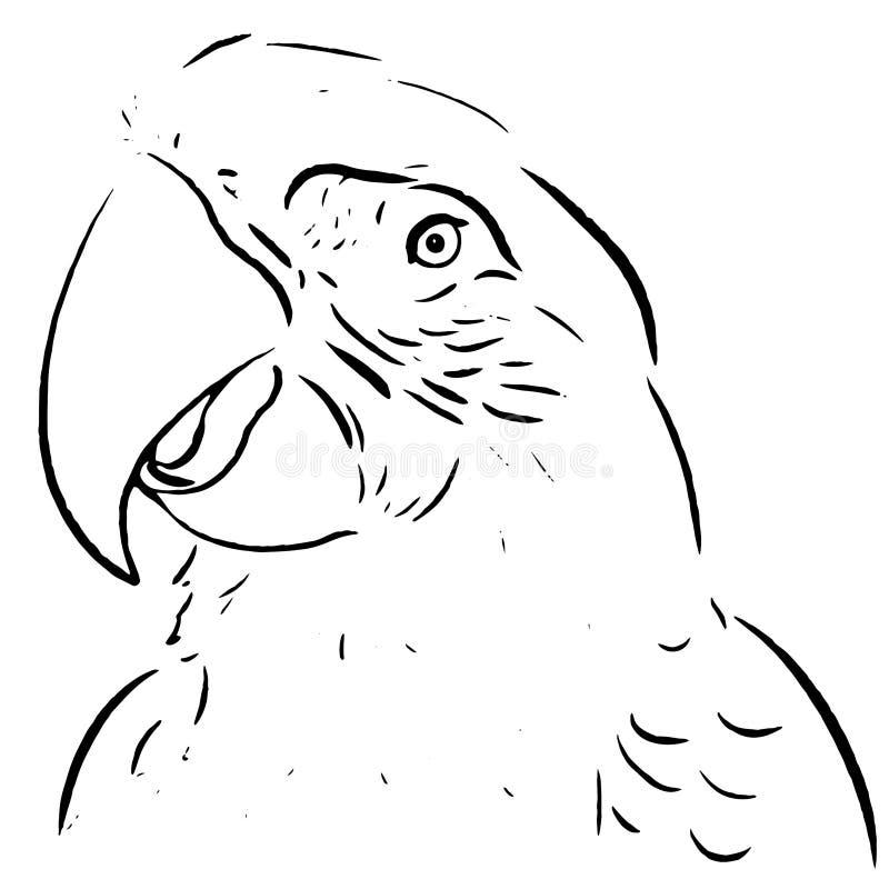 Papugi linii remisu ilustracja ilustracja wektor