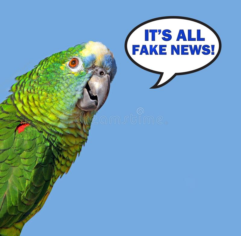 Papuzi mowa bąbel mówi sfałszowaną wiadomość obrazy stock