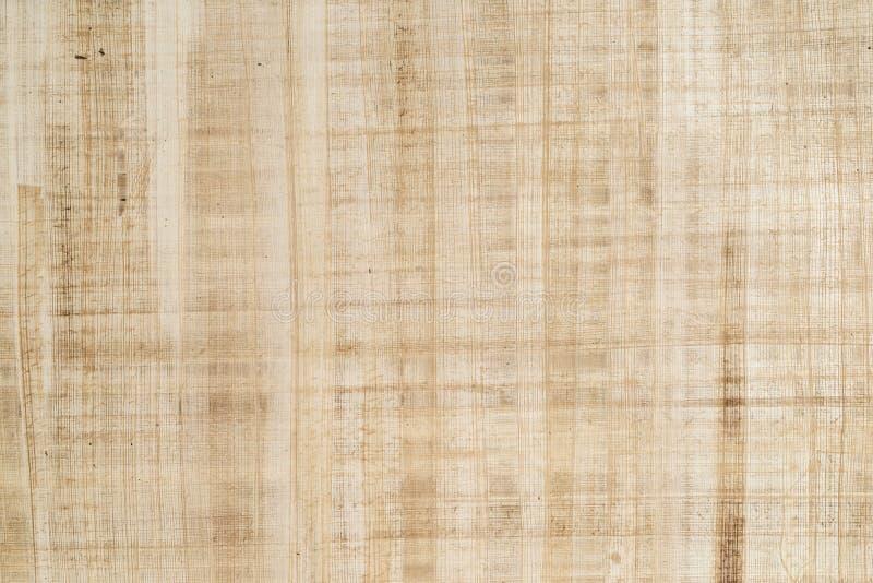 papyrus royaltyfri fotografi