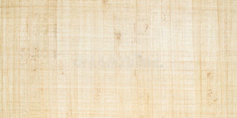 papyrus royaltyfri bild