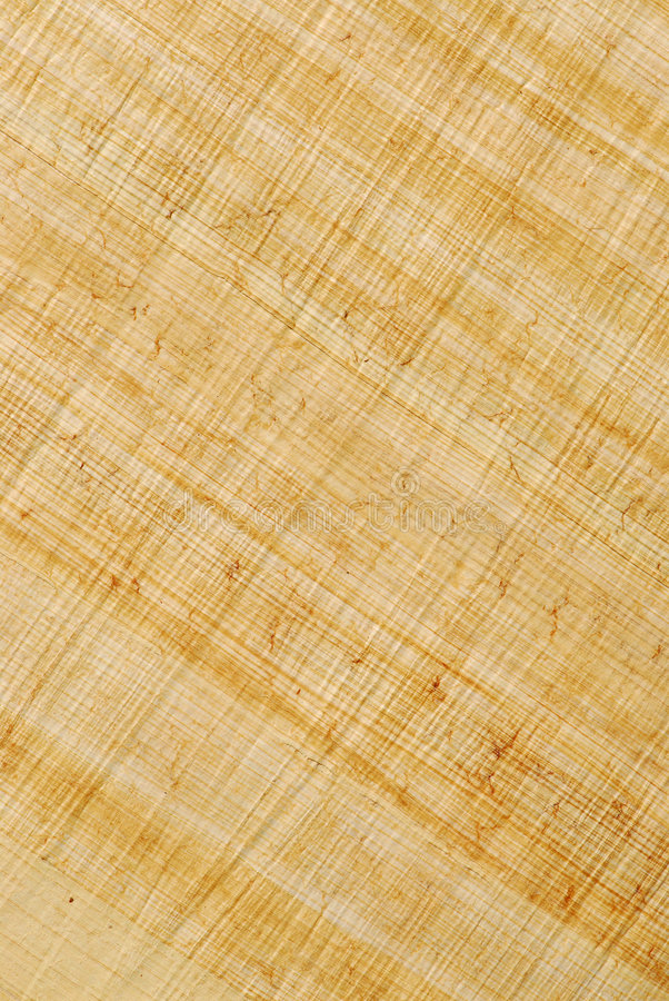 Papyrus Stock Afbeeldingen
