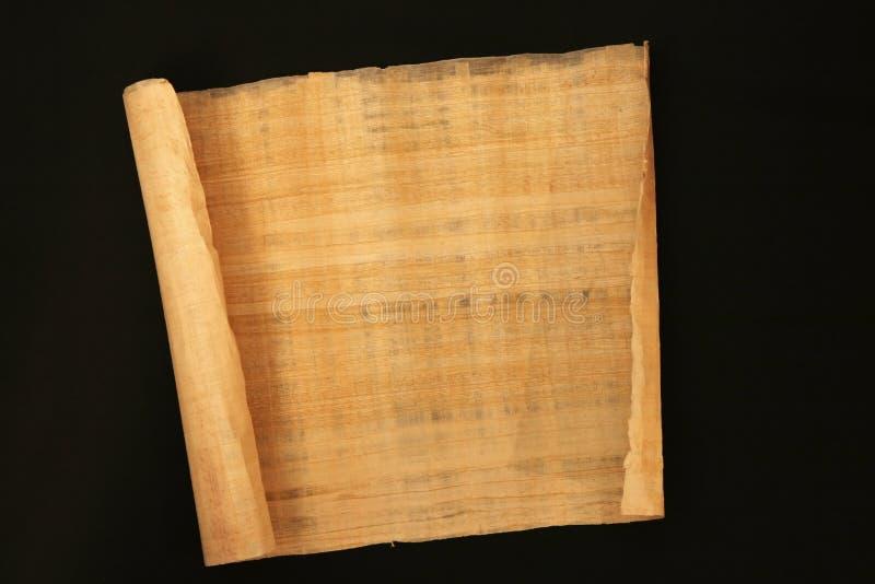 papyrus royaltyfri foto