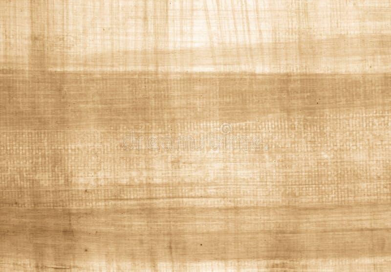 Papyrus photographie stock