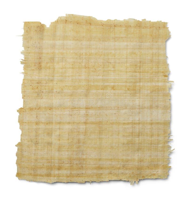 Papyrus arkivfoto