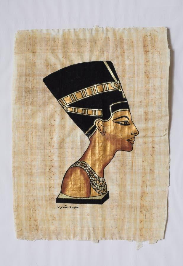 papyrus стоковая фотография rf
