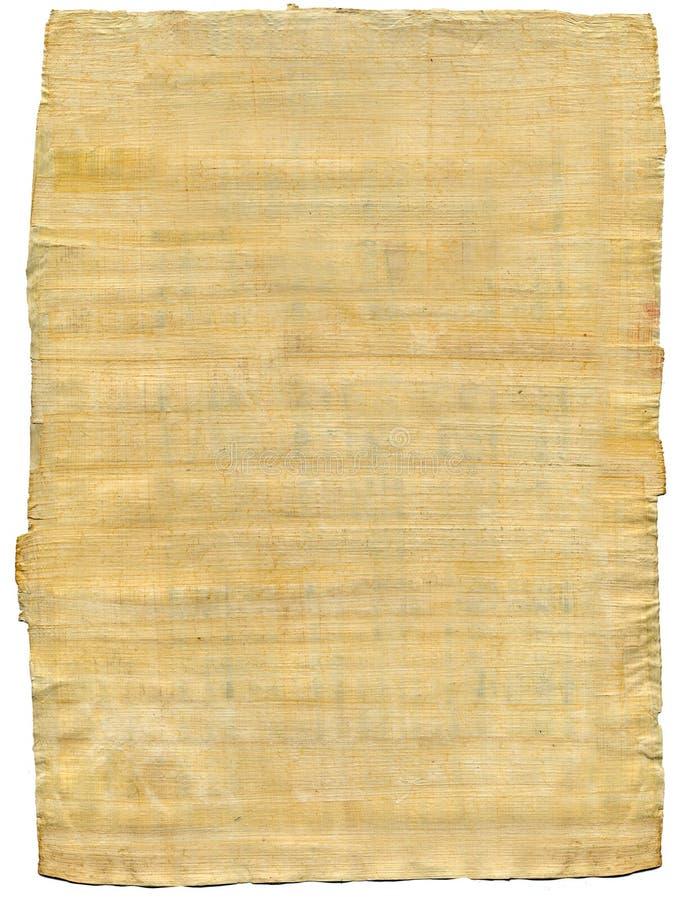 papyrus image libre de droits