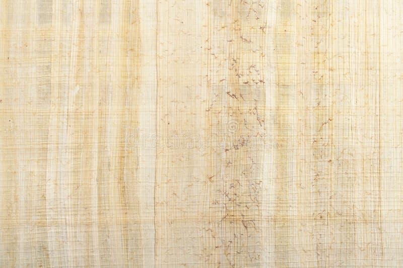 Papyrus Texture stock photo. Image of papyrus, backdrop - 22079214