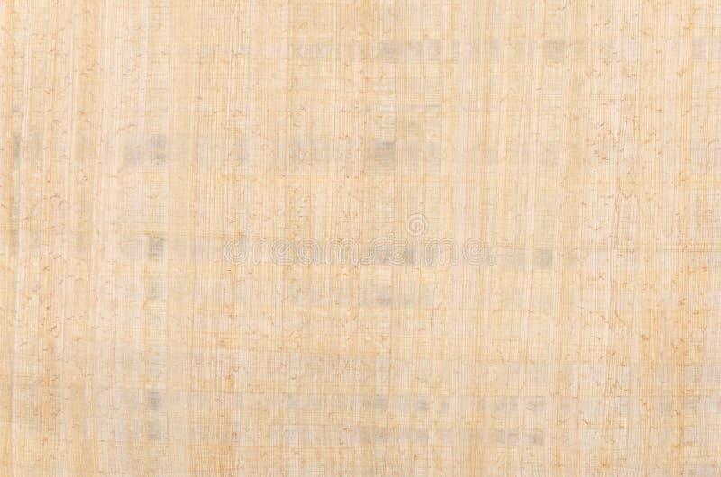 Papyrusyttersidafoto från över royaltyfri fotografi