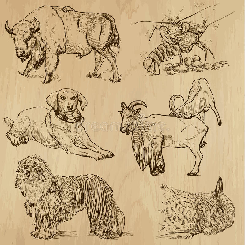 Paquet 10 d'animaux illustration stock