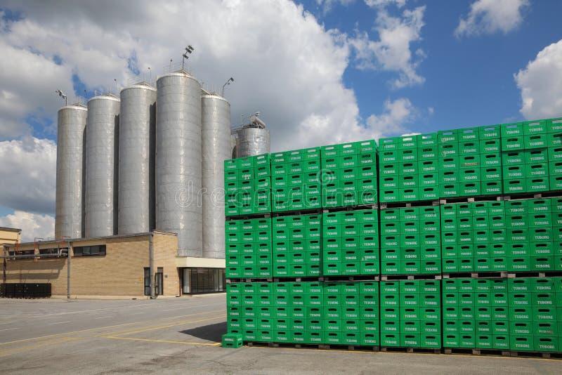 Paquet de bière de Tuborg dans l'usine images libres de droits