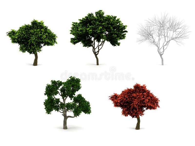 paquet des arbres 3d. illustration de vecteur