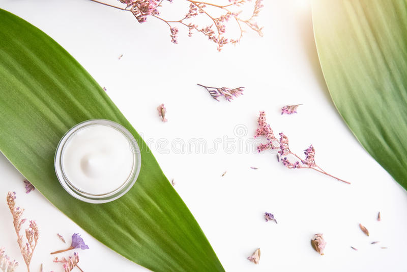 Paquet placé et vide de bouteille crème blanche de label pour la moquerie sur un fond vert de feuillage et fleurs Le concept du b photographie stock libre de droits