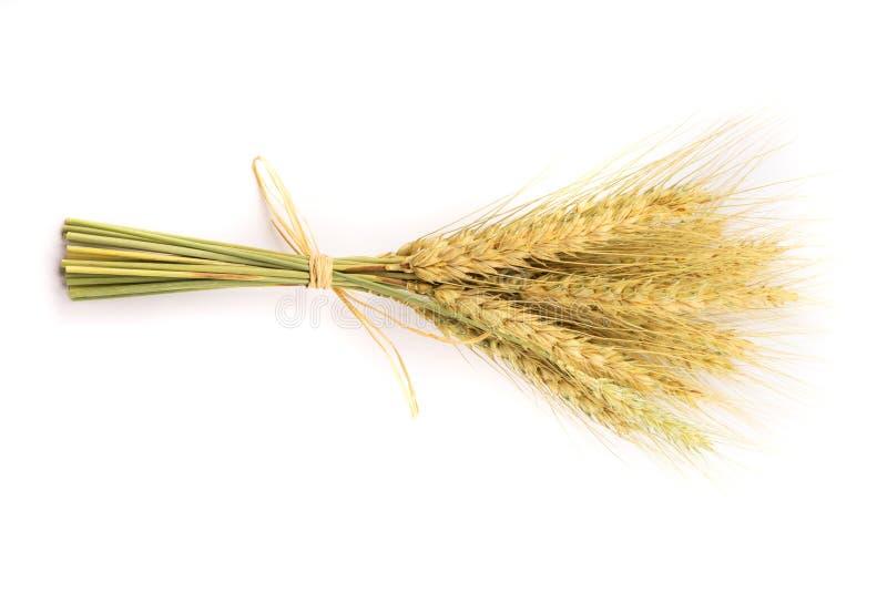 Paquete amarillo del trigo en el fondo blanco foto de archivo
