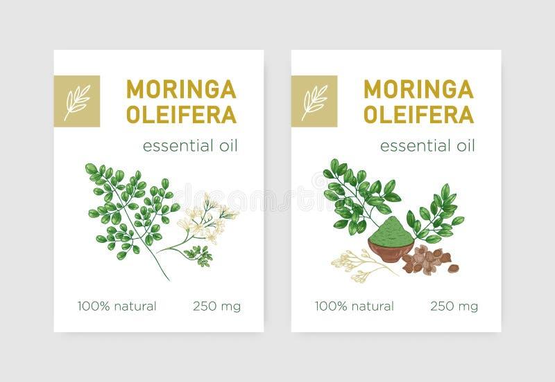 Paquete de etiquetas con el árbol o la moringa oleifera del milagro Fije de etiquetas con la planta herbácea comestible usada en  ilustración del vector