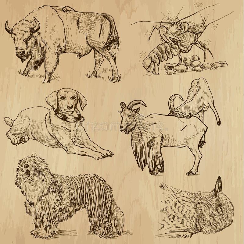 Paquete 10 de los animales stock de ilustración