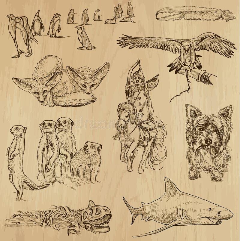 Paquete 13 de los animales stock de ilustración