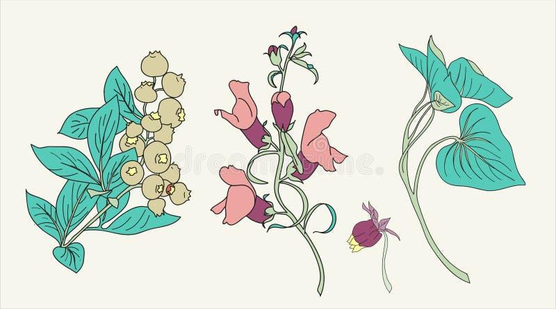 Paquete del elemento de la flor del vector fotografía de archivo libre de regalías