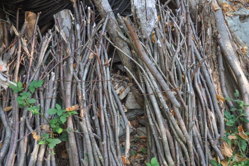 paquete del haz de leña de ramas imagen de archivo libre de regalías
