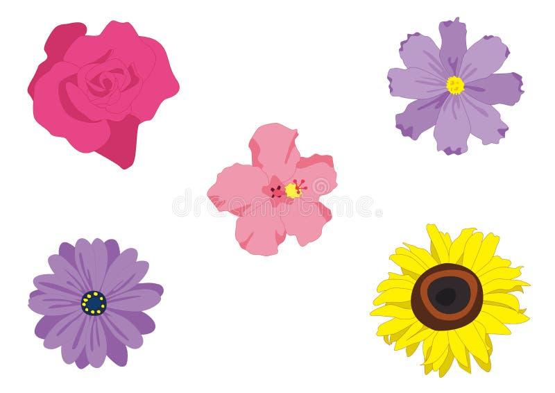 Paquete del vector de la flor fotos de archivo