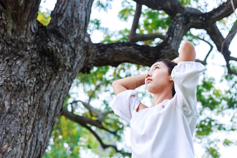 Paquete hermoso de las mujeres de pelo cerca del árbol grande imagen de archivo