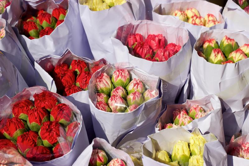 Paquetes o ramos del clavel para la venta, mercado de la flor de Hong Kong imagenes de archivo