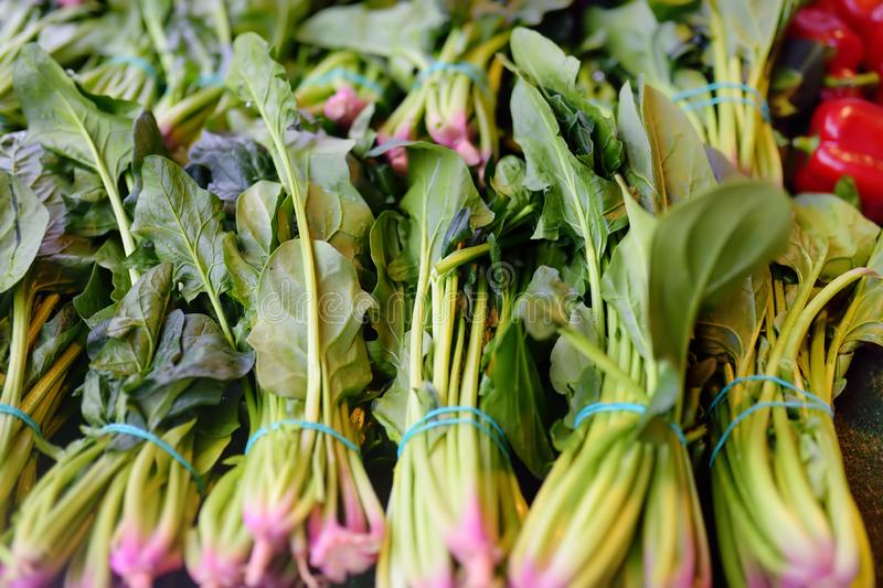 Paquets d'épinards verts frais sur le marché agricole d'agriculteur photo stock
