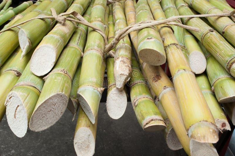 Paquets de bambous photo stock