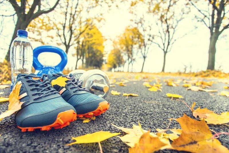 Par av blåa sportskor bevattnar och hantlar som läggas på en bana i en trädhöstgränd med lönnlöv - tillbehör för körd exerc arkivbilder