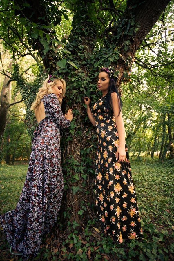 Par av bohostilkvinnor står vid det enorma trädet i trä arkivfoto