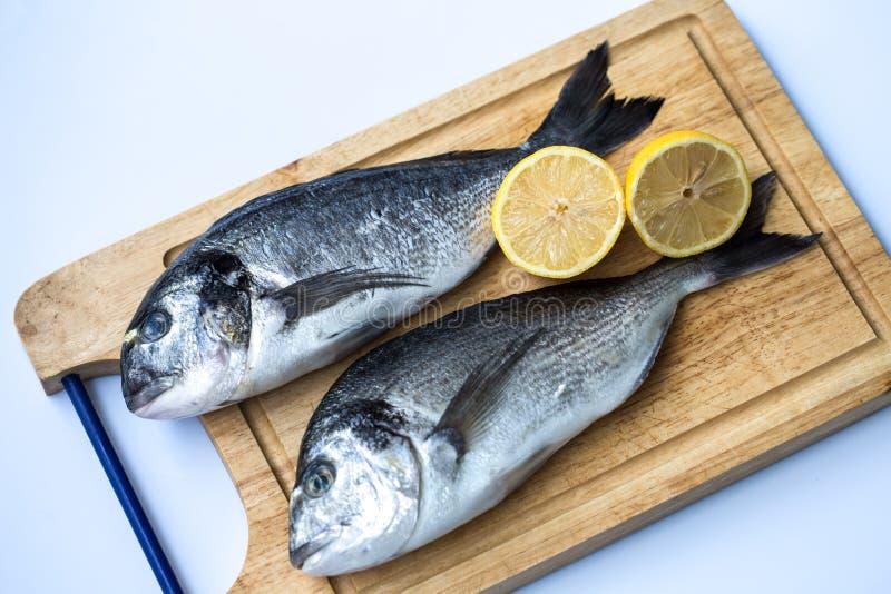 Par av den nya rå havsbraxen fiskar den Sparus aurataen eller Orata på träskärbräda på en vit bakgrund royaltyfri bild