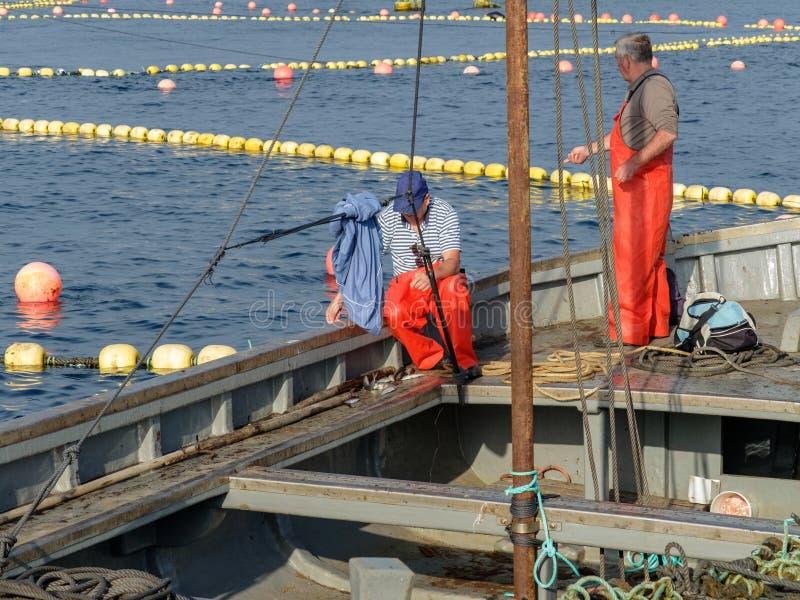 Par av fiskare som förbereder reven arkivbilder