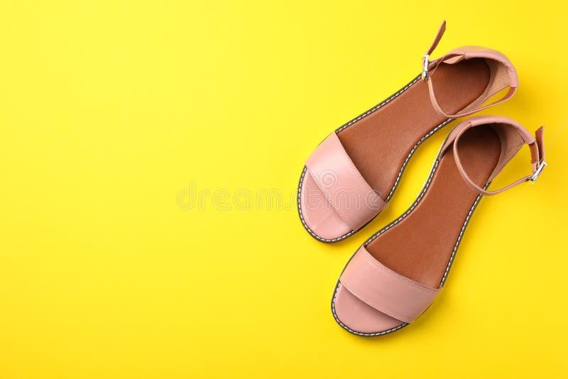 Par av moderiktiga skor för kvinna` s royaltyfri foto
