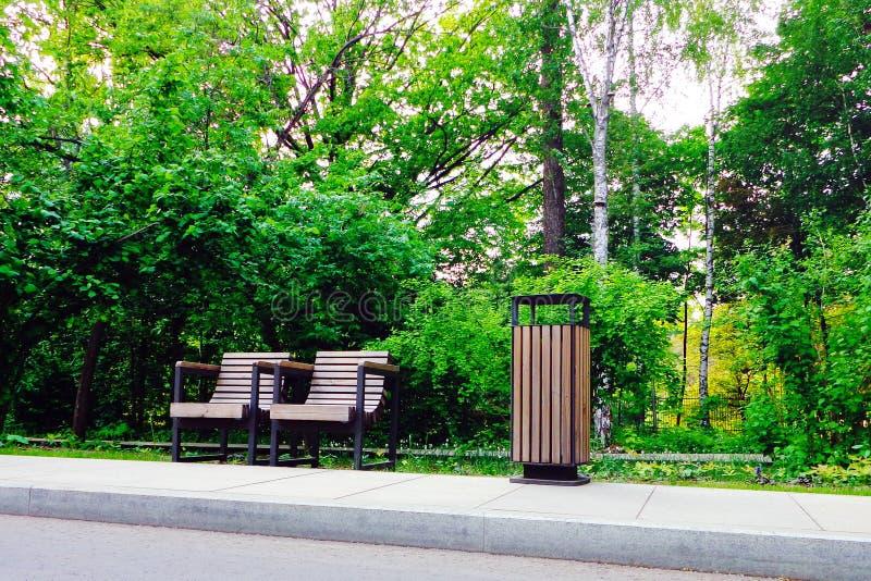 Par av trä parkerar stolar, och trashcan i grön sommar parkera royaltyfri foto