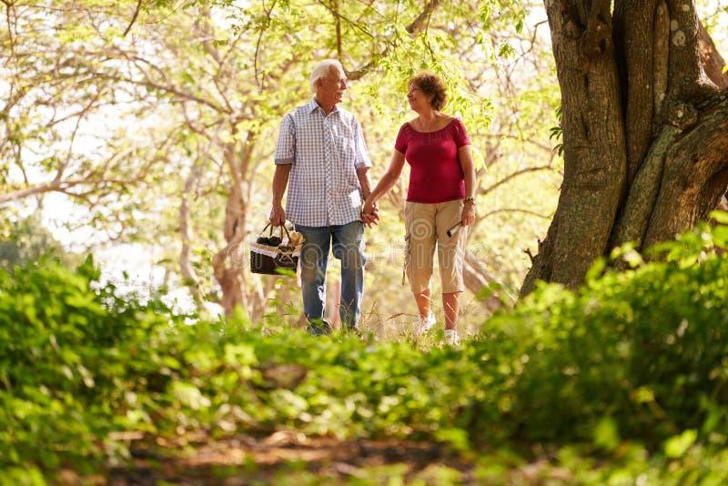 Par för kvinna för hög man som gamla gör picknicken arkivbilder
