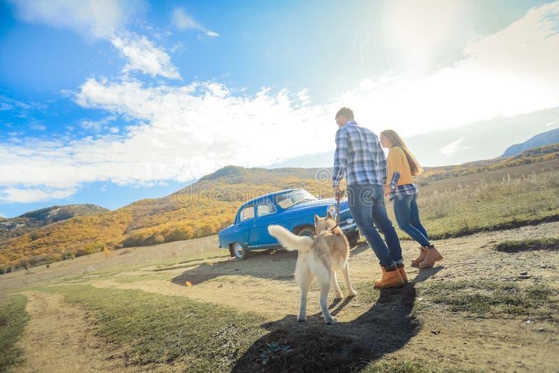Par går händer för innehavet för ängen för bygd för solnedgången för apportörhundhösten royaltyfri foto