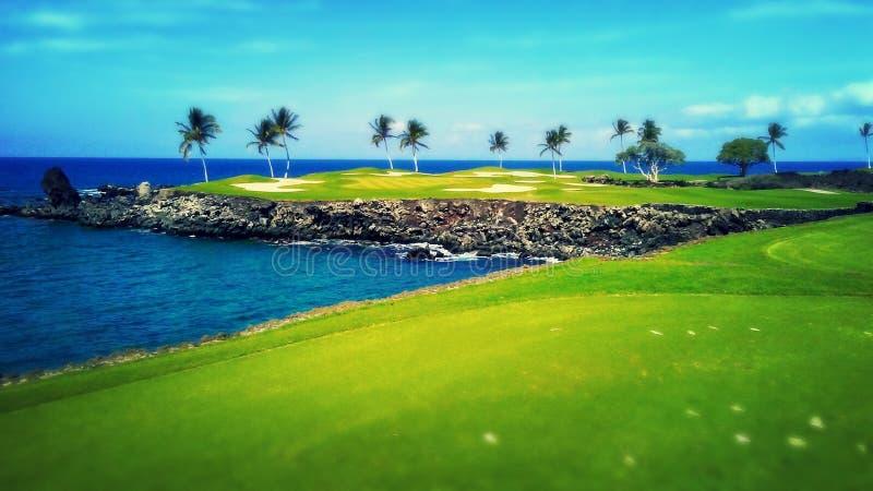 Par hawaiano 3 foto de archivo