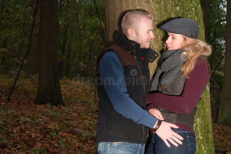 Par i skogen arkivbilder