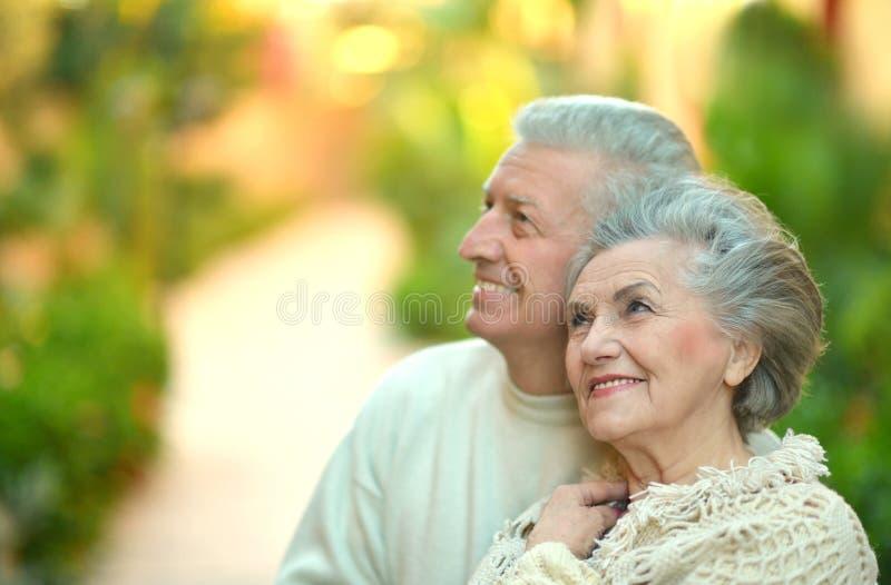 Par i trädgård royaltyfri foto