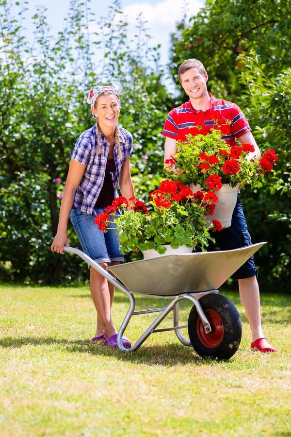 Par i trädgård med kärran och blommor arkivbilder