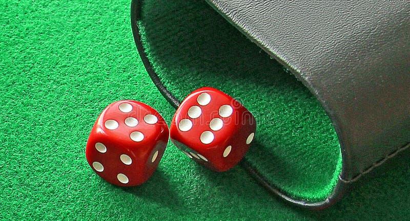 Par kostek do gry potrząsacza sześć pięć hazardu gry deski trik-trak fotografia stock