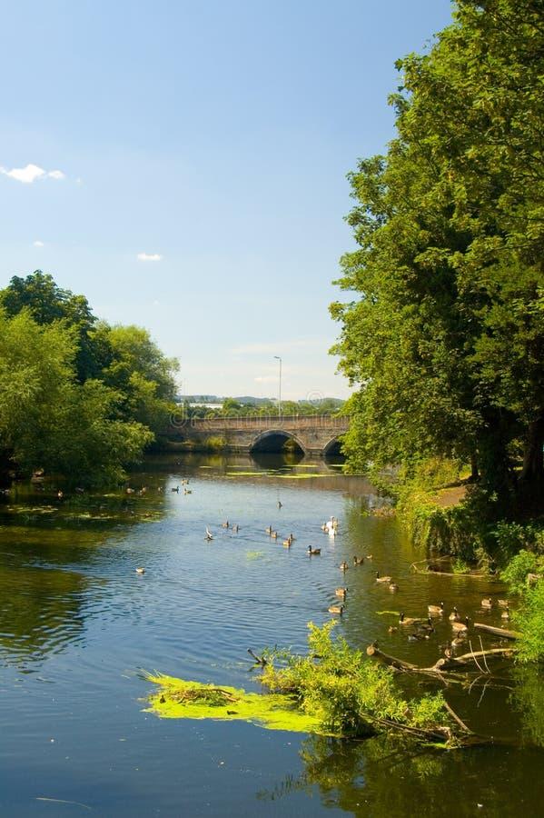Par le fleuve à tamworth photos libres de droits
