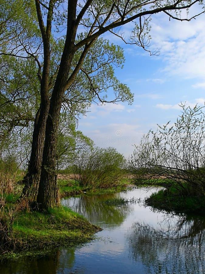 Par le fleuve images stock