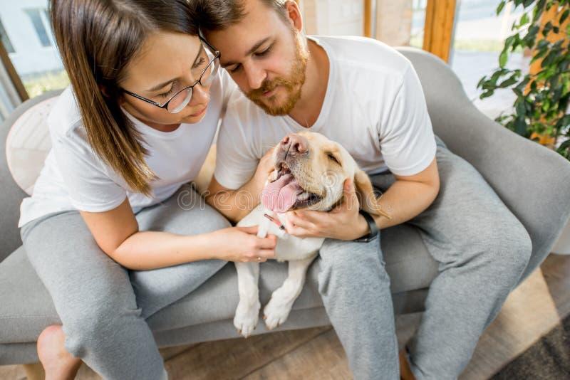 Par med hunden på soffan hemma royaltyfria foton