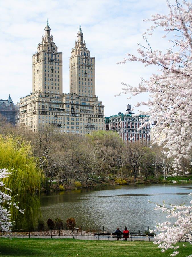 Par med skyskrapasikt i Central Park arkivfoton