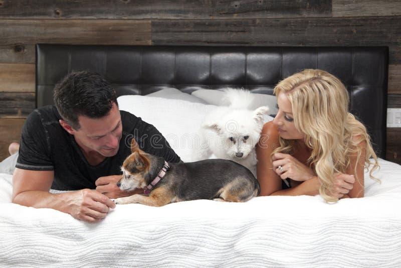 Par på säng med hundkapplöpning arkivfoto
