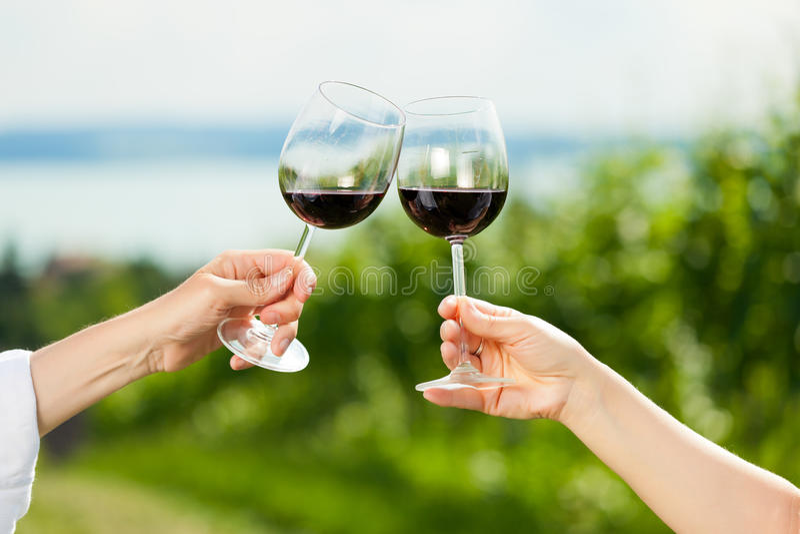 par som dricker lycklig lakesommarwine royaltyfria bilder