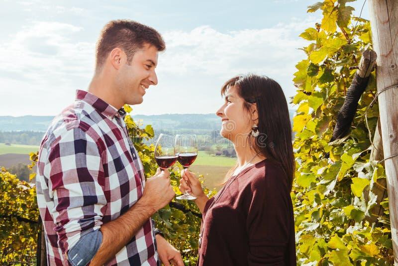Par som dricker vin i en vingård royaltyfri fotografi