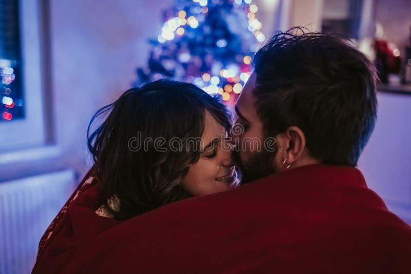 Par som framme täckas med filtkel av julgranen arkivbild